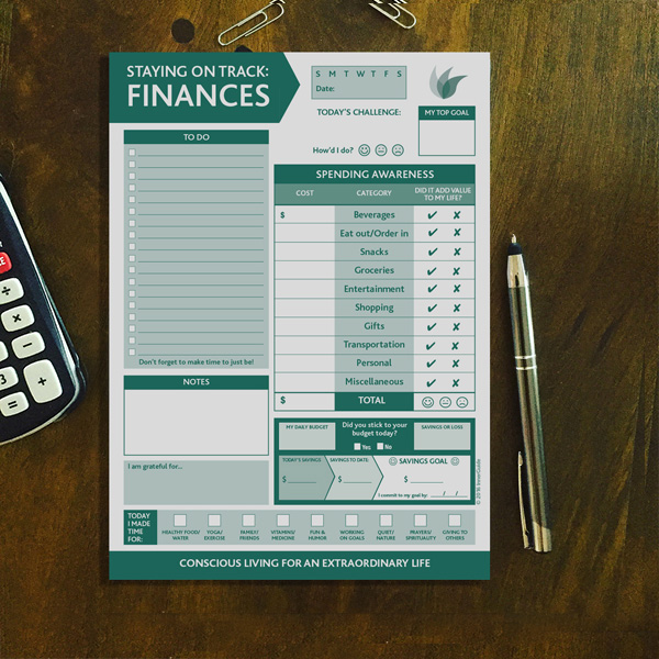 staying on track finances 6 5 x9 innerguide